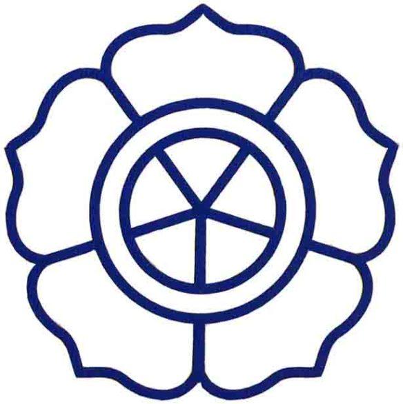 Logo Amikom Biru
