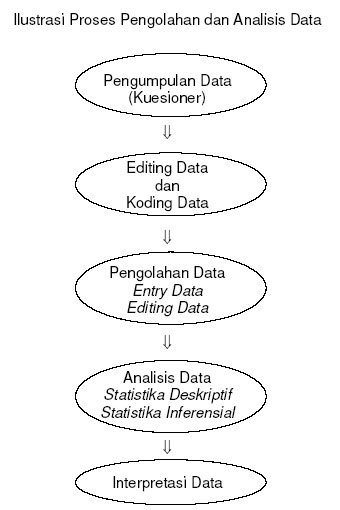 Proses pengolahan dan analisis data