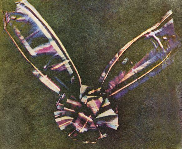 Citra berwarna yang pertama, Maxwell, 1861