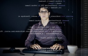 Pembangun Sistem (System Builder/Programmer)
