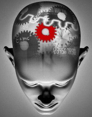 Pengertian Belajar Menurut Teori Kognitif