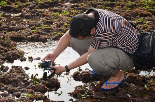 Teknik Frog Eye - Kamera sangat Rendah hampir sejajar dengan ground