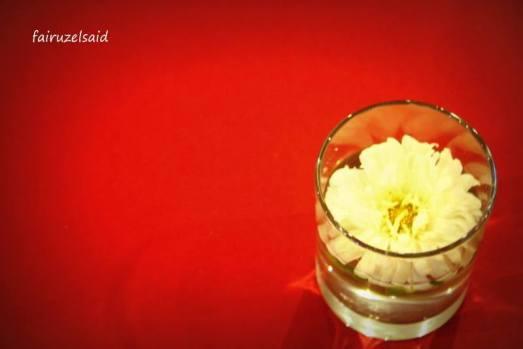 simplicity3